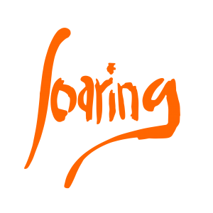 Logo SOARING